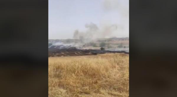Φωτιά ξέσπασε σε περιοχή στον Στρόβολο – Στο σημείο η Πυροσβεστική (ΒΙΝΤΕΟ)