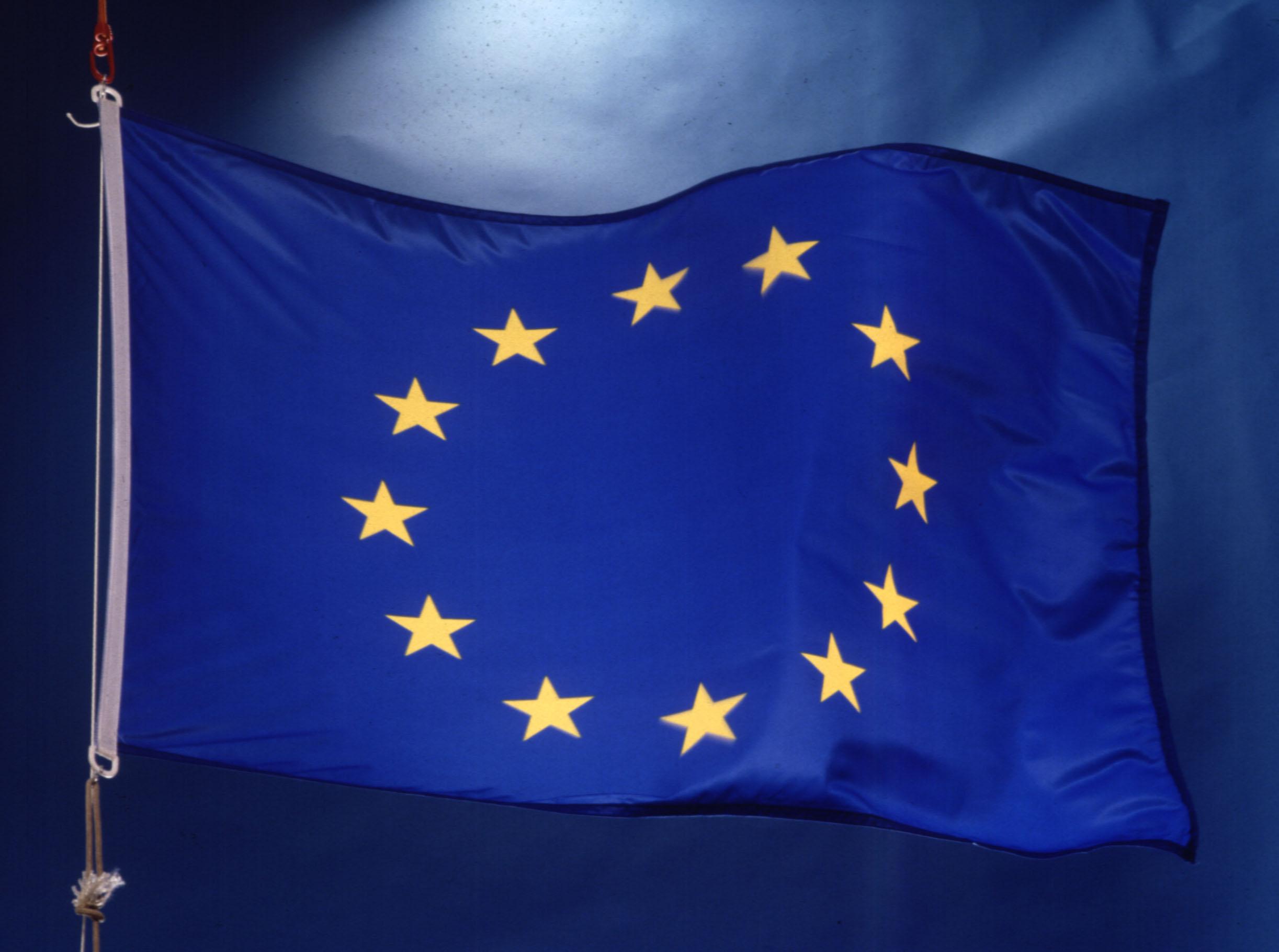 DOC.20150306 .1230219 .eu flag1